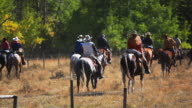 Cowboys and Cowgirls following last of cattle herd video