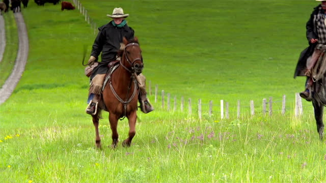Cowboys galloping up hill on horseback video