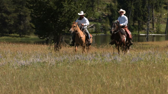 Cowboys ride horses, slow motion video