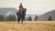 Cowgirl riding her horse across mountain meadow video