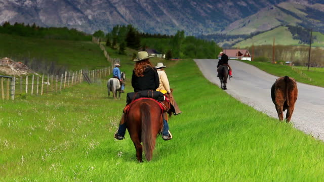 Cowgirls and Cowboys herding cattle into the foothills video