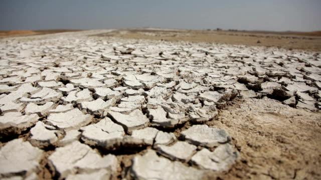 Cracked Dry Soil video