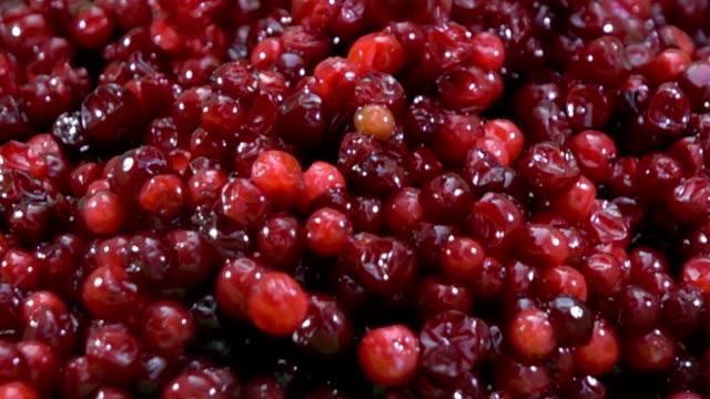Cranberry fruit background slow motion video