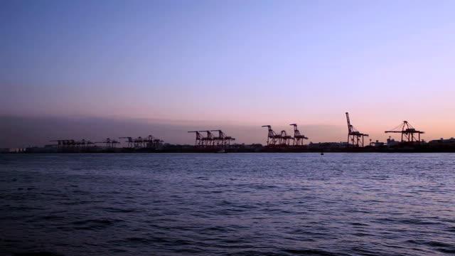 Cranes in Dusk video
