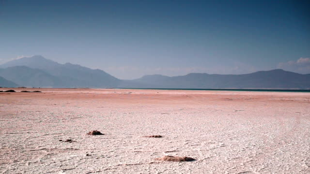 Crater dry lake Assal. Surface covered with salt. video