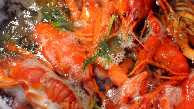 craw-fish boiling video