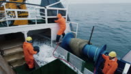 Crew of Fishermen Open Trawl Net with Caugth Fish on Board of Commercial Fishing Ship video