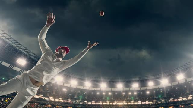 Cricket batsman on the stadium video