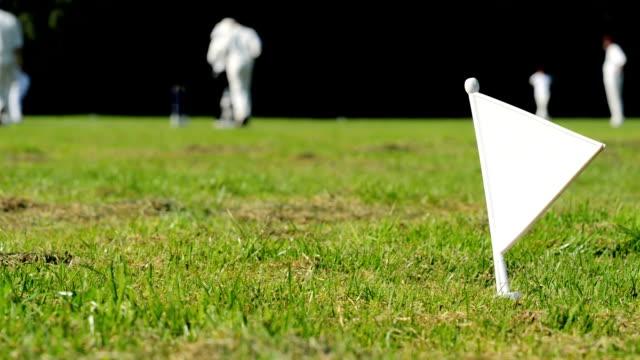Cricket boundary flag video