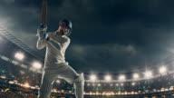 Cricket player on the professional cricket stadium video