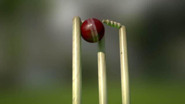 Cricket Stumps video