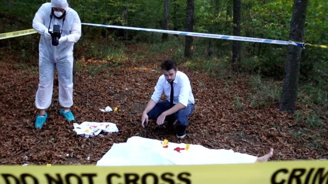 Crime scene in the wild video