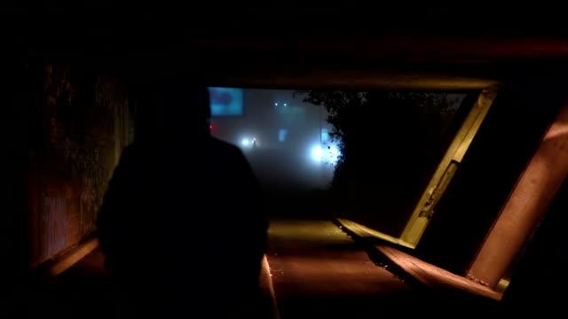 HD: Criminal Attacks From an Ambush video