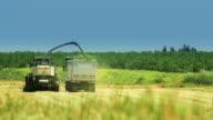 Crop Harvesting in summer field video