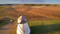 Crops on the grains field in Jarvamaa Estonia video