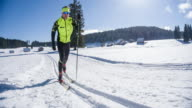 Cross country skier on skiing track in idyllic winter landscape video