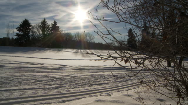 Cross country skiing 10 video
