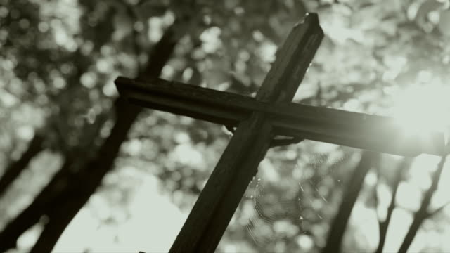 Cross in cemetery, Trees, Lights video