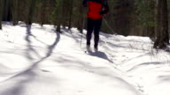Cross-country Skier video