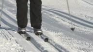 Cross-country Skiing video