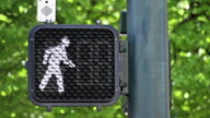Crosswalk Signal with Timer video