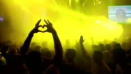 Crowd in the nightclub video