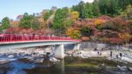 Crowd of people on red bridge with colorful Autumn leaf at Korankei, Japan. video