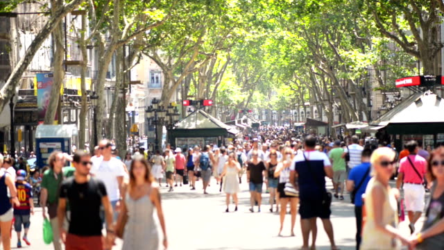 Crowdy Street video