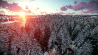 Cruising over forest hills and sea, beautiful sunrise, snowing video