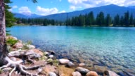 Crystal Clear Mountain Lake See Through Water video