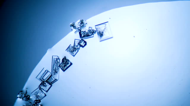 Crystal growth, microscope photography using a microscope video