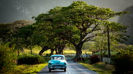 Cuba / Classic Car on scenic Road video