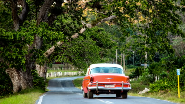 Cuba: Travel : Vintage car on country road video