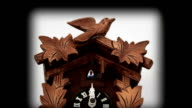 Cuckoo Clock video