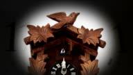 Cuckoo Clock video