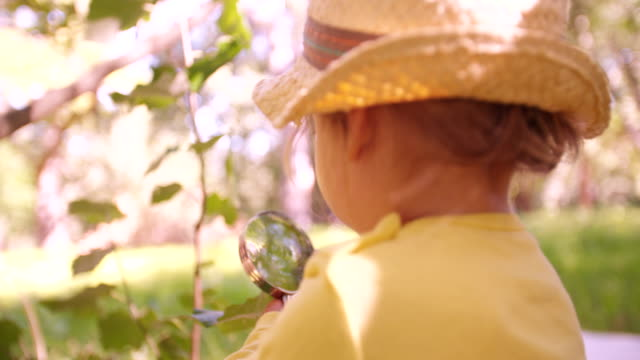 Curious toddler studying a leaf with a magnifying glass video