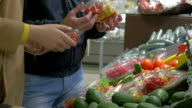 Customers choosing tomatoes in the supermarket video
