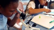 Cute African American STEM school student examines something with a microscop video