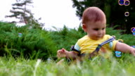 Cute baby boy having fun with soap bubbles on grass video