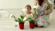 Cute baby girl dressed as an angel play with flowers video