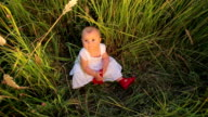 Cute baby in a white dress sitting on tall grass video