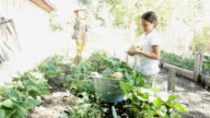 A cute female private elementary school student harvests vegetables on school field trip video