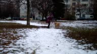 Cute girl and her golden retriever dog running in the park video