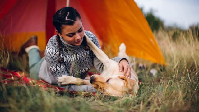 Cute girl playing with her dog in front of her tent video
