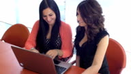 cute girls are working ate the computer in her office: teamwork, coworkers video