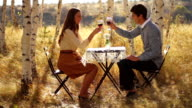 Cute Young Couple Drinking Wine in the Park video