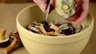 cutting cepe and Bay Bolete mushroom (Boletus badius) video
