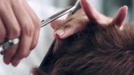 Cutting hair video