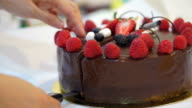 cutting sticky chocolate cake with fresh strawberries and berries video