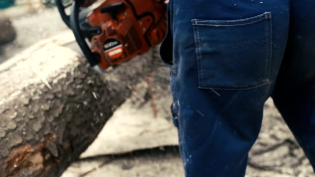 Cutting through wood with chainsaw in super slow motion. video